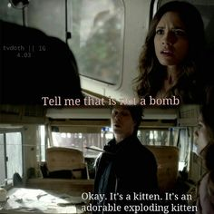 A #TVD Funny: Kitten Bombs! http://sulia.com/channel/vampire-diaries/f/4ae94ea7-78ab-4380-a912-b6dddb7daef8/?source=pin&action=share&btn=small&form_factor=desktop&sharer_id=54575851&is_sharer_author=true&pinner=54575851