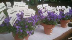 #Bodas ideales en el #Parador de #Soria   #naturaleza #flores #wedding