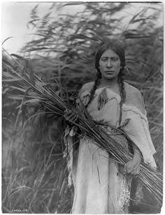 Shoshone woman.