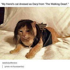 The Walking Dead Season 6 Finale Memes7