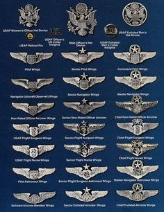 "USAF United States Air Force ""WINGS"" Chart (:Tap The LINK NOW:) We provide the best essential unique equipment and gear for active duty American patriotic military branches, well strategic selected.We love tactical American gear Army Ranks, Military Ranks, Military Insignia, Military Veterans, Military Service, Military Life, Military History, Military Aircraft, Military Awards"