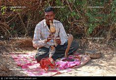http://www.photaki.com/picture-snake-charmer-goa-india_988753.htm