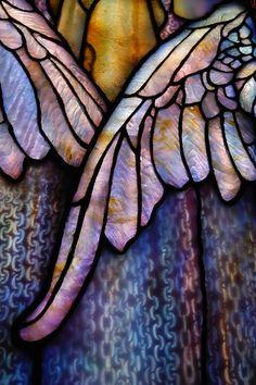 Tiffany Wings