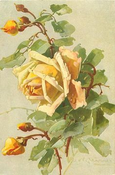 one large yellow rose open facing left, three yellow buds opening, two buds closed, stalks central Catherine Klein, Art Floral, Vintage Diy, Vintage Flowers, Vintage Floral, Victorian Flowers, Decoupage Art, Rose Art, Pictures To Paint