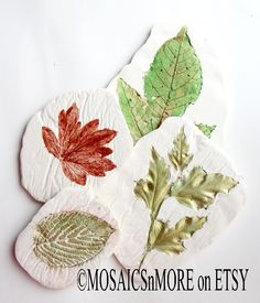 Easy plaster nature decor - go to my face book page for more information about how easy this is.