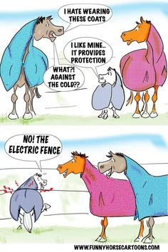 Winter blanket horse comic. Ponies are too clever for their own good!