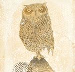 My Owl Barn: Owl Lover 2014 Calendar free - so cool - you select the owl images for each month from different artists.