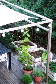 Climbing plants for shelter Although ancient with principle, the actual pergola continues to be experiencing Pergola With Roof, Covered Pergola, Pergola Shade, Pergola Patio, Pergola Plans, Backyard, Pergola Carport, Small Pergola, Outdoor Projects