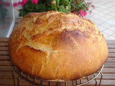 Nem vagyok mesterszakács: Ropogós héjú tönkölyös, kovászos kenyér. A kovász élete 3. rész