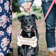 Pet Sign for Engagement Save the Date Photography - Dog Save the Date Sign for Wedding Pictures, Wed Farm Engagement Photos, Engagement Photo Poses, Engagement Announcement Photos, Engagement Shots, Engagement Photo Inspiration, Fall Engagement, Wedding Save The Date Pictures, Save The Date Photos, Unique Save The Dates