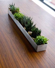 Plant Troughs, Trough Planters, Outdoor Planters, Indoor Outdoor, Cement Planters, Diy Planters, Garden Troughs, Outdoor Decor, Planting Succulents