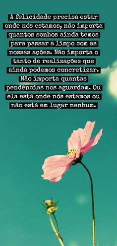 Felicidade More Than Words, Some Words, Peace Love And Understanding, Perfect Word, Latin Words, Special Words, Happy Today, Perfection Quotes, Printable Quotes