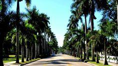Mc Gregor Boulevard