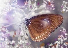 """Ask Lucy: """"Change not Want,"""" Most Live to Want, Not Many Live to Change.  Change is on your Lights To Do List. """"uS"""""""