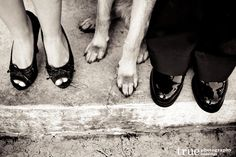 Engagement Photo Shoot with a German Shepherd Puppy | Jaclyn and Austin in San Diego / from truephotography.com