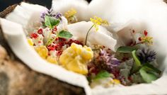 Best of the Best 2012: Dining: Next | Robb Report - The Global Luxury Source