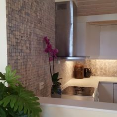 Kjøkken fliser i kokosnøtt fra WALL-IT tar litt av naturen inn på kjøkkenet! Tiles, Wall, Plants, Room Tiles, Tile, Walls, Plant, Planets, Backsplash