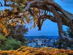 Ciudad Perdida. 1er Puesto Concurso de fotografía. Unicentro. Cali. Colombia.