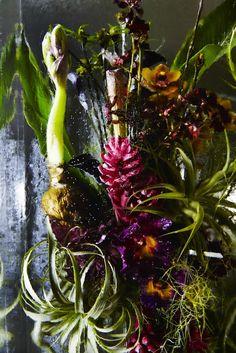11-azuma-makoto-iced-flowers
