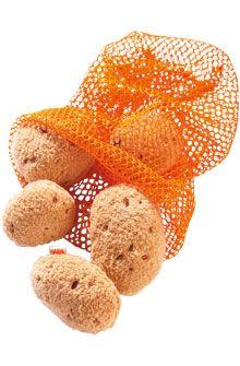 HABA - Erfinder für Kinder - Potatoes - Biofino - Toy shop - Toys & Furniture