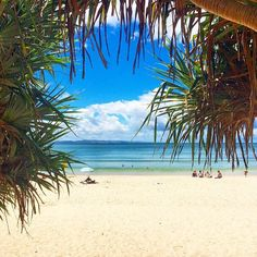 Looking through the Pandanus trees to paradise!