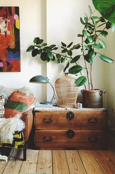 Best Air Purifying House Plants ★ See more: http://glaminati.com/air-purify-house-plants/