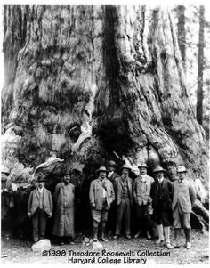 George - with over 2 mil views - THANKS posted a photo:  Abraham Lincoln signed an Act of Congress on June 30, 1864 ceding Mariposa Grove and Yosemite Valley to the state of California. Criticism of stewardship over the land led to the state's returning the grove to federal control with the establishment of Yosemite National Park. en.wikipedia.org/wiki/Mariposa_Grove  ++ ++ ++ ++ ++ ++  Theodore Roosevelt rencontre John Muir à Yosemite en 1903…