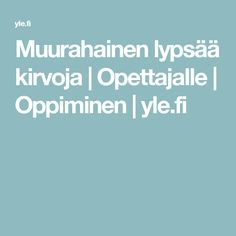 Muurahainen lypsää kirvoja | Opettajalle | Oppiminen | yle.fi