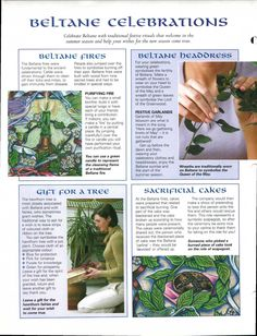 ** Beltane Celebrations Infographic For A Book Of Shadows Beltane, Wicca Witchcraft, Green Witchcraft, Wiccan Sabbats, Wiccan Crafts, Mind Body Spirit, Samhain, Book Of Shadows, Faeries