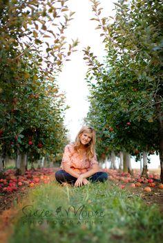 orchard!