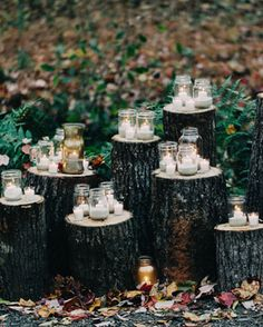 mason jar candles on wood trunks