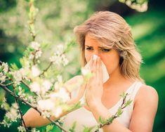 02a631bfad Tres alimentos para combatir la alergia primaveral. Tres alimentos para  combatir la alergia primaveral - ElSol.com.ar - Diario de Mendoza ...