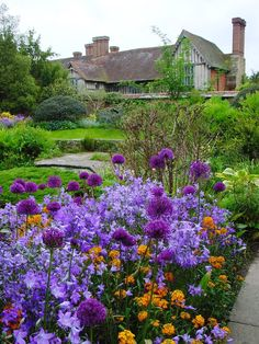 Purple Campanula [Bell Flower] For Cottage Garden – Start A Easy Backyard Project - HoliCoffee Small Cottage Garden Ideas, Cottage Garden Plants, Sun Garden, Garden Path, Garden Bed, Landscape Design, Garden Design, Vita Sackville West, Famous Gardens