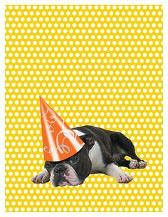 """Boston Terrier Birthday Card ... """"Here's to an exhausting birthday."""""""