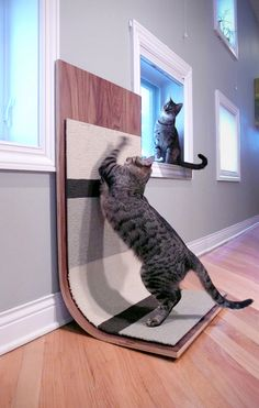 modern cat scratcher - don't have a cat but think this is a great idea.  Can be hung on the wall!