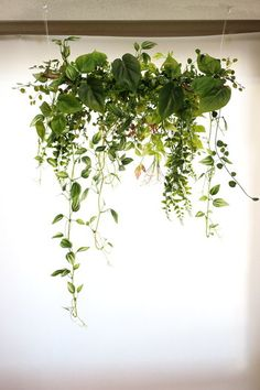 "Both ""subtle"" and ""gorgeous"". Natural garland using flowers and plants Faux Plants, Green Plants, Green Flowers, Indoor Plants, Plantas Indoor, Vertical Garden Plants, Love Garden, Plant Shelves, Interior Plants"