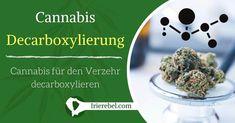 Decarboxylierung ist eine chemische Reaktion, mit der Cannabis zum Verzehr wirksam gemacht werden kann. Die wissenschaftliche Bezeichnung (Decarbolyxierung) beschreibt den Prozess, THCA, das nicht psychoaktiv ist aber auch andere medizinische Eigenschaften hat, in THC umzuwandeln. Da Cannabis in roher Form THCA anstelle von THC enthält, bevor es erhitzt oder geraucht wird, ist die Decarboxylierung ein wesentlicher Schritt bei der Verarbeitung von Cannabis das zum Verzehr verwendet werden…