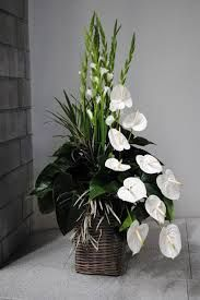 Cool arrangement with anthurium and gladiolus Gladiolus Arrangements, Tall Floral Arrangements, Funeral Flower Arrangements, Beautiful Flower Arrangements, Floral Centerpieces, Beautiful Flowers, Altar Flowers, Church Flowers, Funeral Flowers