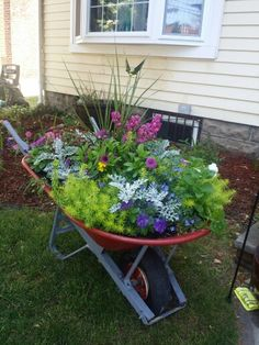 Loving how the wheel barrow planter turned out