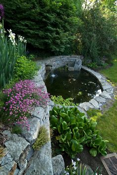a small pond surrounded by stones is usually filled with water plants, but if it is deep and wide enough, koi will feel equally at home