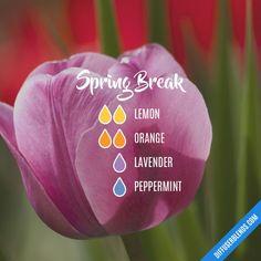Spring Break - Essential Oil Diffuser Blend