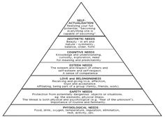 Maslow's Hierarchy of Needs / Humanistic psychology / Process of adult development to achieve enlightenment