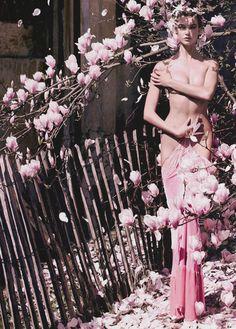 Inspiration, Magnolia, Nude Purity Flowers