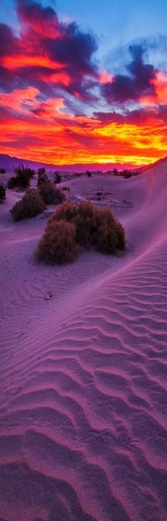 Sunrise at sand dunes, Death Valley National Park, California.Mesquite Flats < this picture looks remarkably similar to sunset over the sand dunes here in Australia, only instead of hills in the distance, it would be the ocean. Beautiful Sunset, Beautiful World, Beautiful Places, All Nature, Amazing Nature, Pretty Pictures, Cool Photos, Landscape Photography, Nature Photography