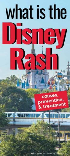 Disney On A Budget, Disney World Vacation Planning, Walt Disney World Vacations, Disney Trips, Disney Parks, Disney World Secrets, Disney World Outfits, Disney Rash, Eczema Relief