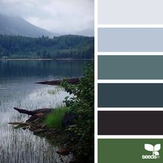 nature-colors-palette-design-seeds-jessica-colaluca-15