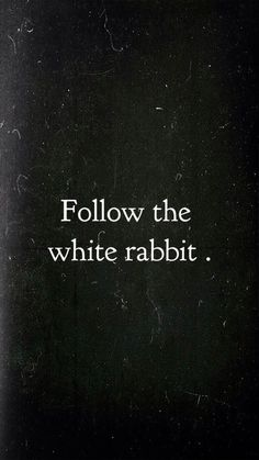 "dame-de-nuit: ""BE the white rabbit"" Ducky only. dame-de-nuit: ""BE the whi Alice In Wonderland Aesthetic, Alice And Wonderland Quotes, Movie Quotes, Life Quotes, Citations Film, Plus Belle Citation, Dark Quotes, Were All Mad Here, Disney Quotes"