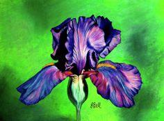 Iris by Laura Bell - Iris Painting - Iris Fine Art Prints and . Iris Art, Bell Art, Iris Painting, Birth Flowers, Cut Flowers, Anniversary Flowers, Flower Artwork, Online Images, Art Pages