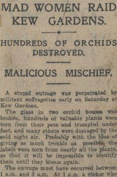 Newspaper clipping from the Daily Express, 10th February 1913