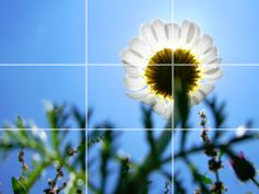 Short video clip showing how to use the rule of thirds in your photography composition